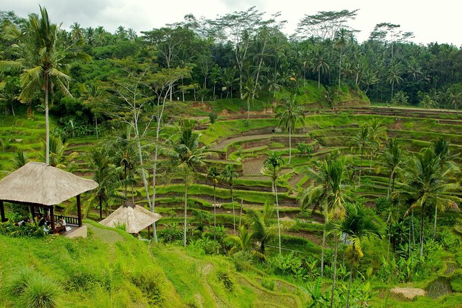 2 Days Best of Bali Famous Tour Packages
