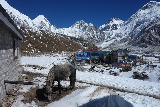Everest Base Camp trek with meals and accommodation