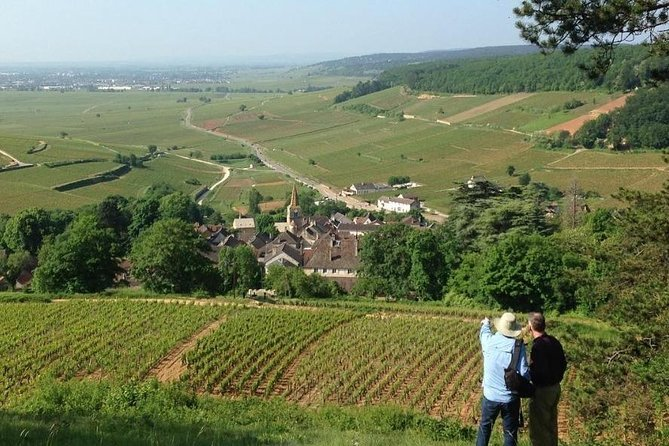 Private vineyard and wine experience