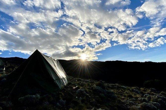 8 Days Kilimanjaro Climb Via Lemosho Route