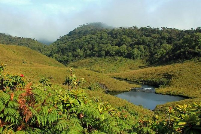 4 Days Tour with Hiking and Scenic Train Ride