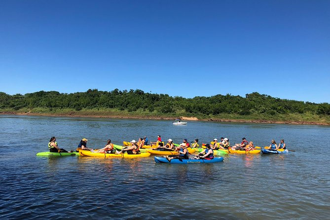 Kayak & Forest Experience (on shared tour)