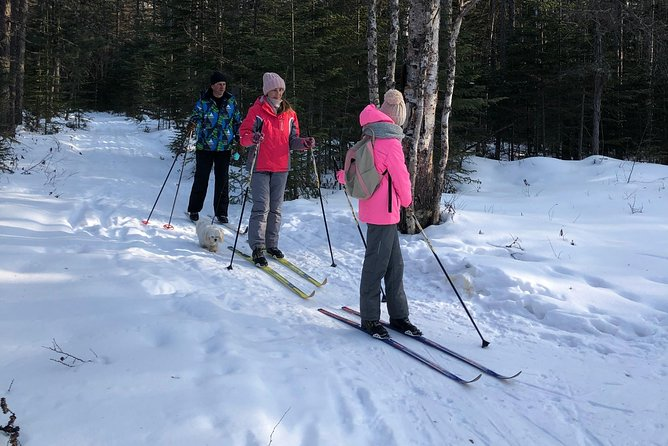 Winter Skiing in Unique Place & Dinner