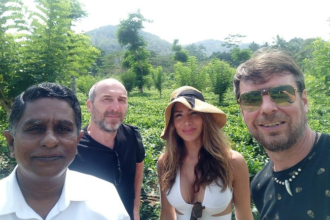 Shore Excursion From Colombo Port to ingiriya Tea Plantation & back 2 pax