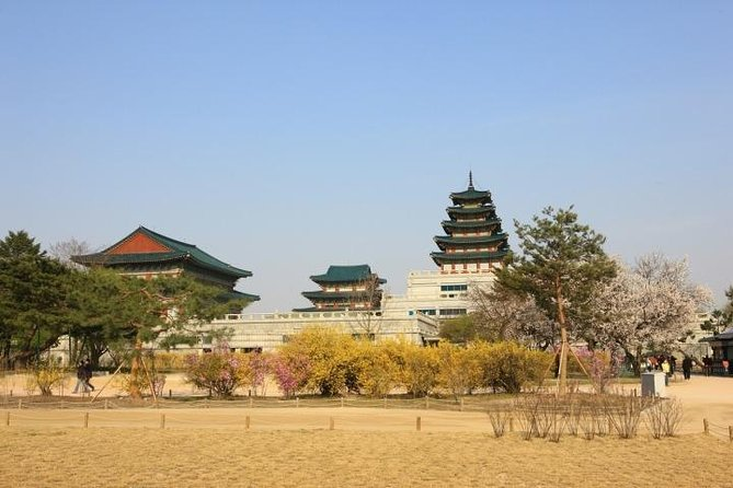Private Full Day Tour to DMZ and Free Style Seoul Tours