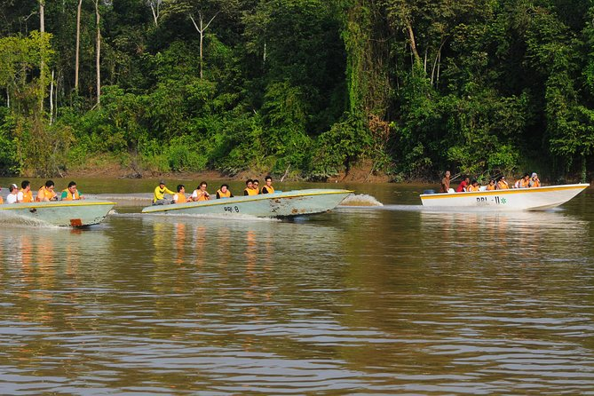 Sandakan Gomatung Cave and Kinabatangan River cruise Day Tour photo 7