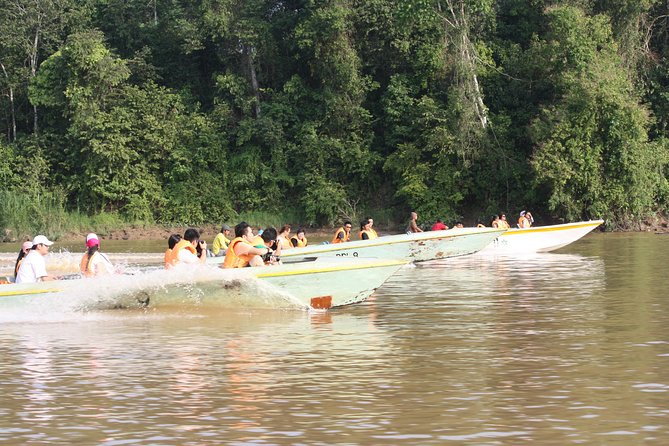 Sandakan Gomatung Cave and Kinabatangan River cruise Day Tour photo 3