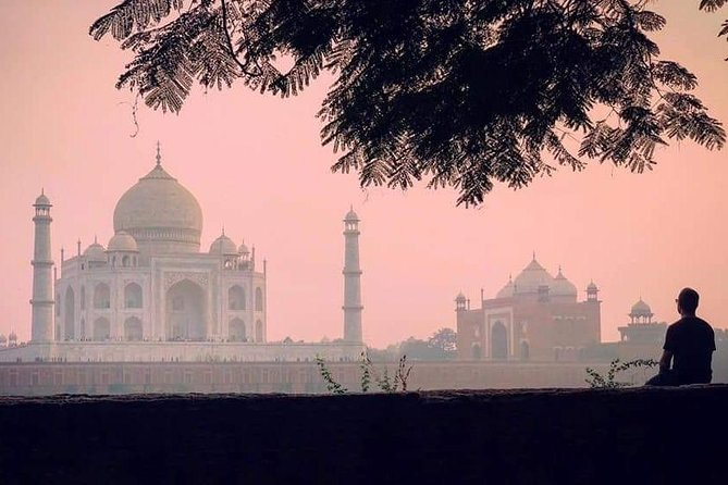 Agra Full Day Taj Mahal at Sunrise With Agra Fort & Itimad-ud-Daulah From Delhi