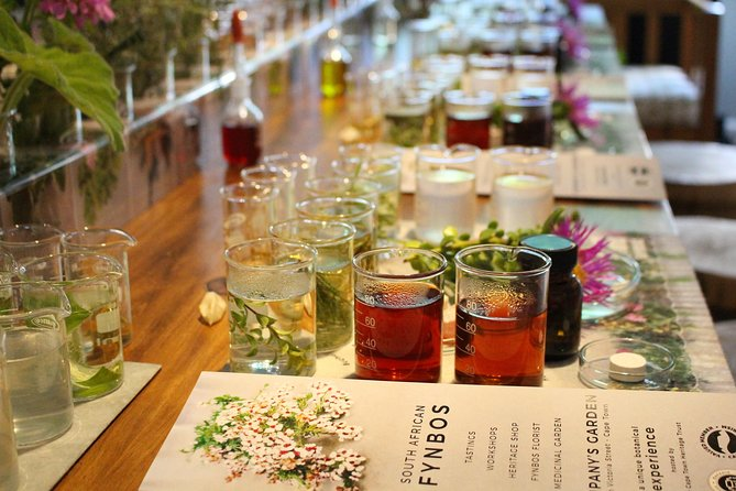 Fynbos Tasting Experience in the historic Company's Garden