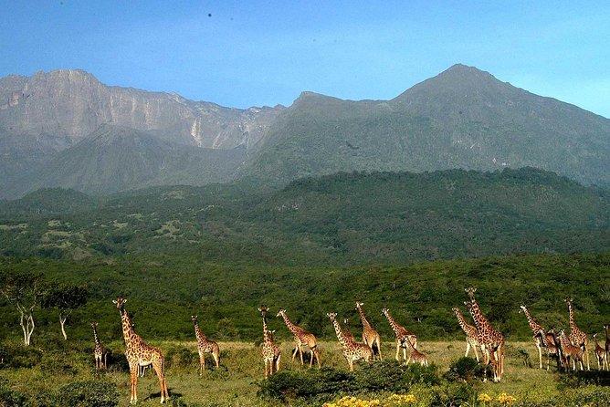 4 days Climbing Mount Meru