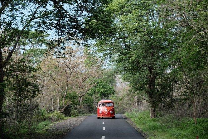 Classic VW Dakota Fun Ride - Ubud VW Tour