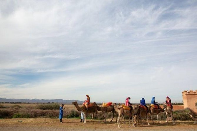 Atlas Mountains and Three Valleys & Waterfalls - Camel ride Day Trip Marrakech photo 25
