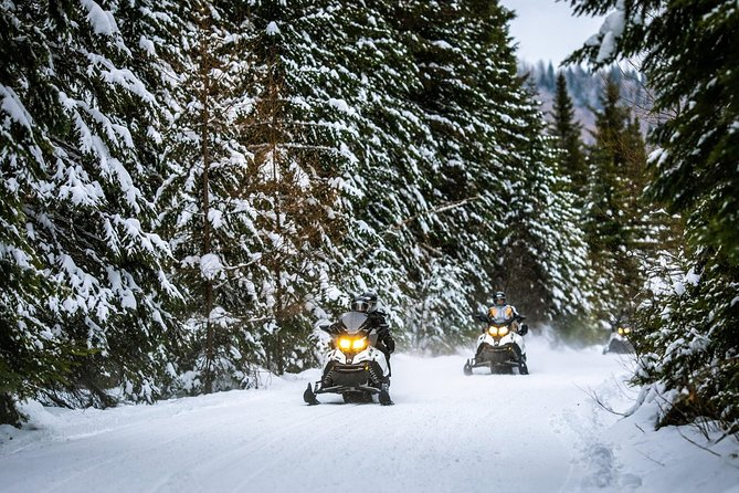 Mont-Tremblant Guided Snowmobile Tours photo 6