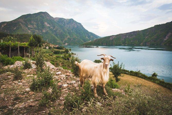 Shala River & Komani Lake (rural village) adventure tour in two days