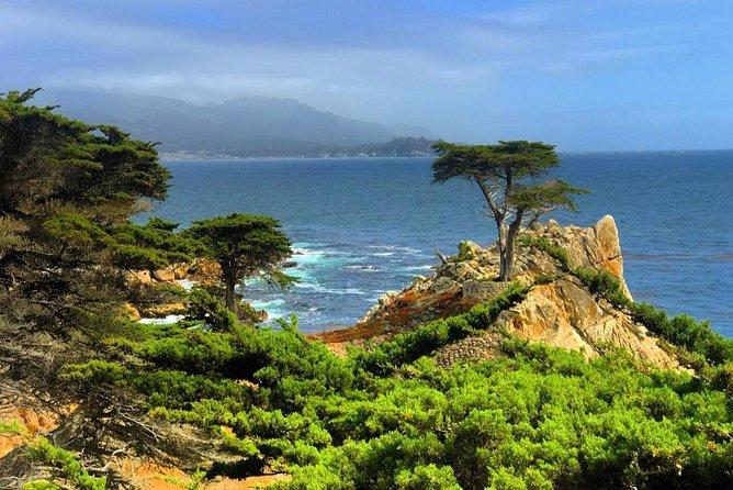 Carmel / Monterey Hwy 1 tour