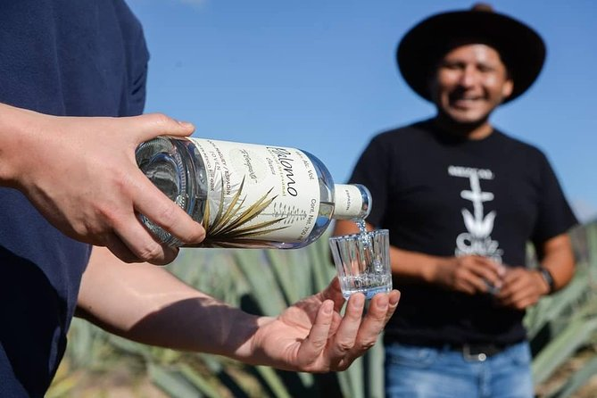 Experience the Oaxaca through mezcal and hiking