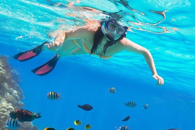 Snorkeling Trip At Paradise Island