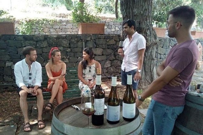 Private 7-Hour Tour of Three Etna Wineries with Tasting from Syracuse photo 13