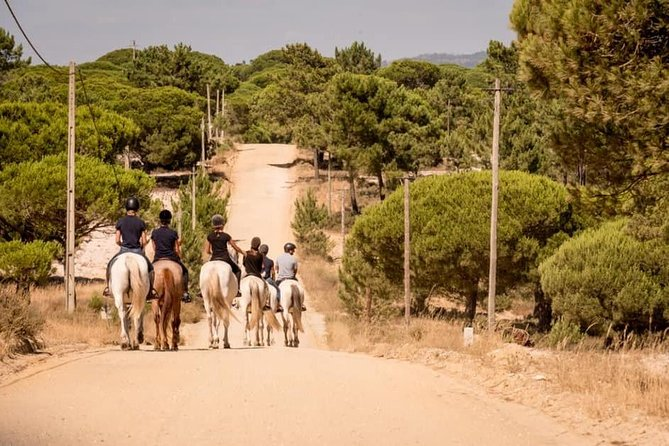 Alentejo tour with lunch and horseback ride on Melides beach