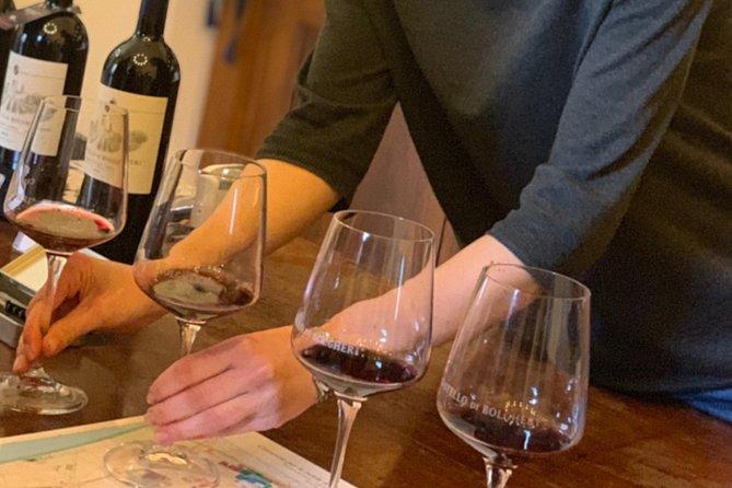 The Original Bolgheri Wine Tour