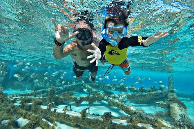 Tour Special Snorkel