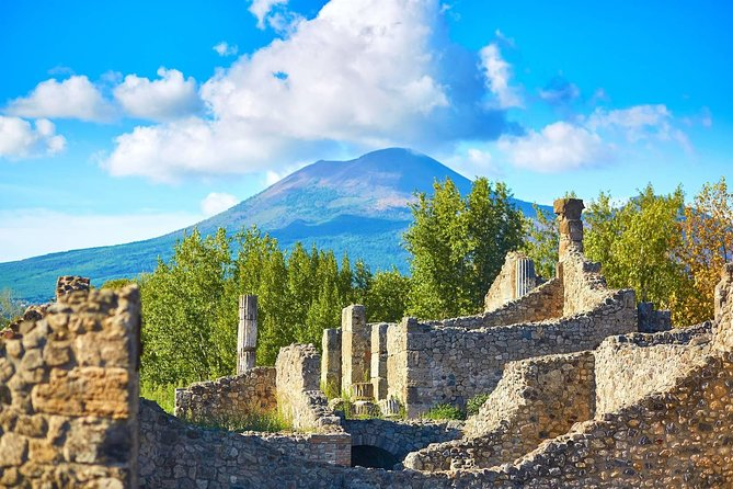 Naples cruise excursion day tour Pompeii mount vesuvius (volcano) & wine tasting photo 2