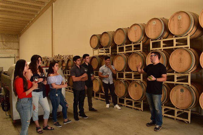 VIP-Meet the Winemakers in Valle de Guadalupe, wine and lunch included