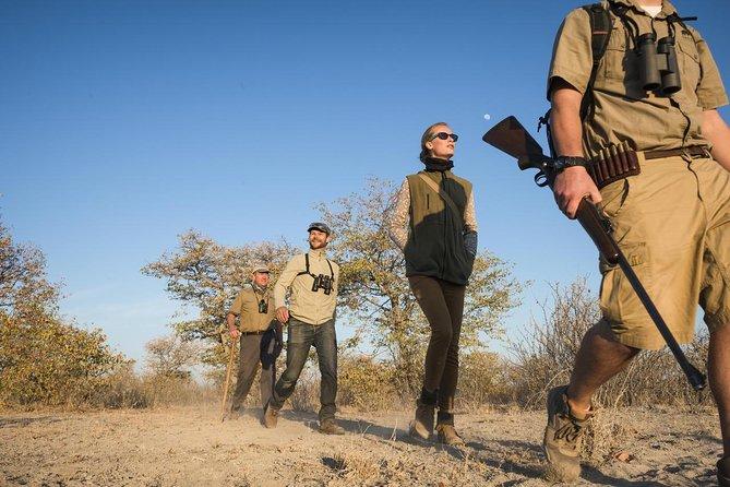 Rhino Tracking of Foot