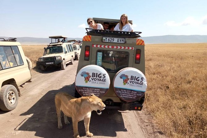2 Days amazing short safari Tarangire and Ngorongoro crater