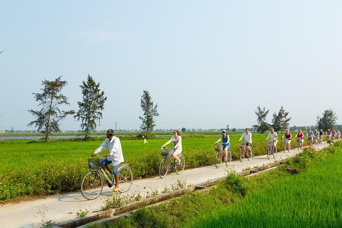 Ubud: Bike Tour to Tegalalang Rice Terrace All inclusive