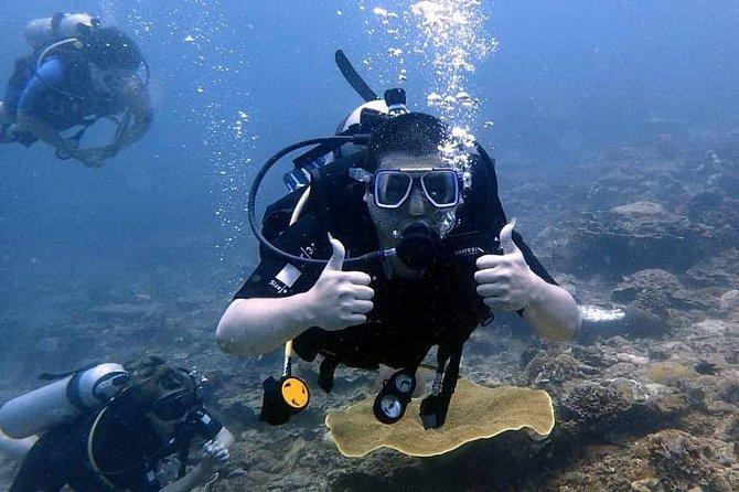Kota Kinabalu Leisure Scuba Diving Trip (3 Dives)