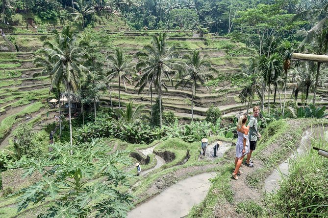 Private Full-day Tour of Ubud Highlights, with Transfer Hotel Included