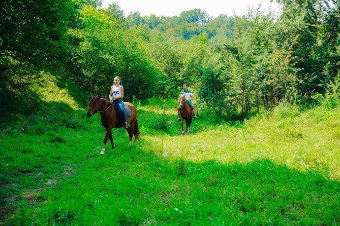 Three hours of horse riding tour from Zubra village to Lviv city and back photo 6