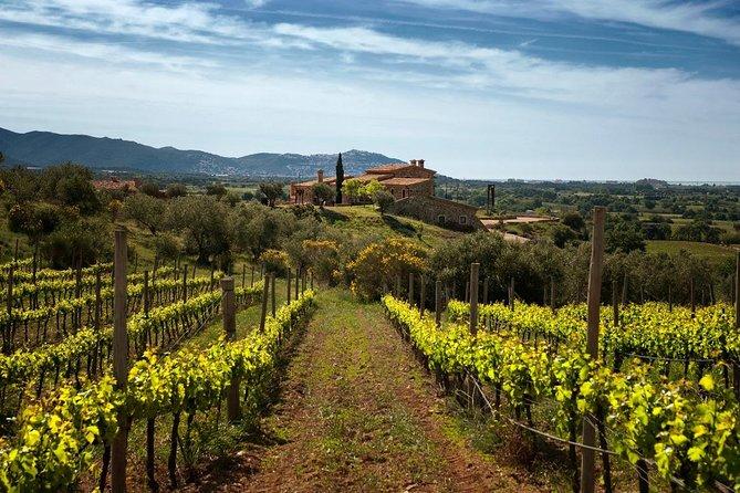 Dalí House & Wine Tour Cadaqués