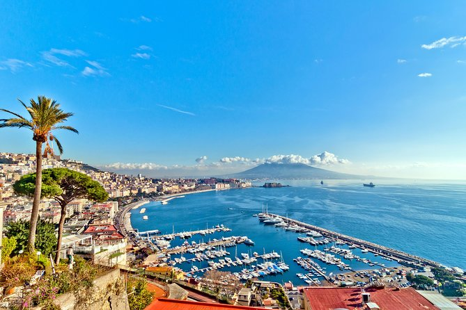 Naples cruise excursion day tour Pompeii mount vesuvius (volcano) & wine tasting
