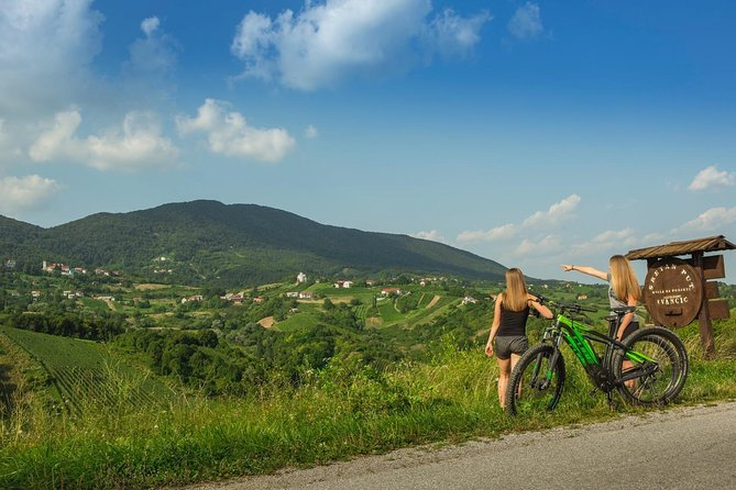 E-Bike Tour & Wine Tasting Private Day Trip from Zagreb