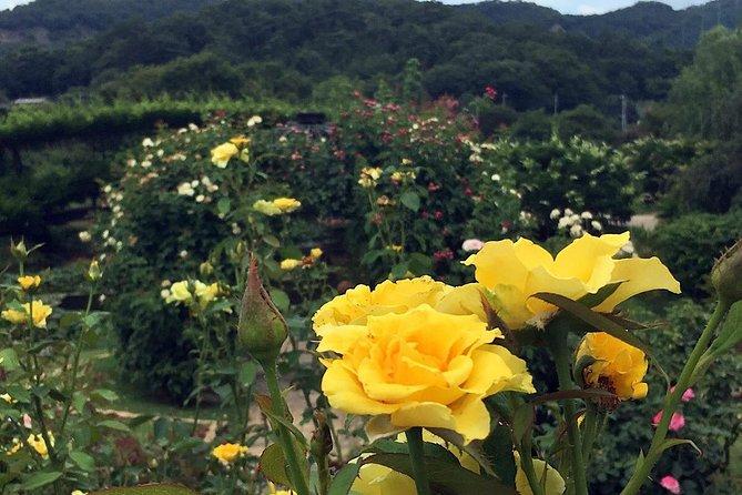 Ashikaga Flower Park Private Day Tour