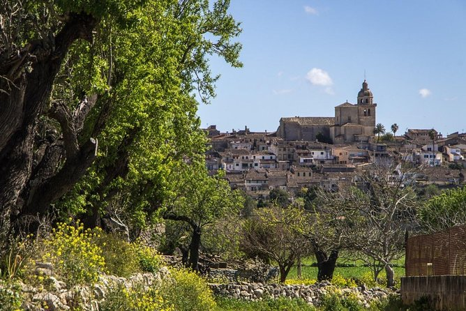 VIP guided tour: Mallorca Inland Villages photo 1
