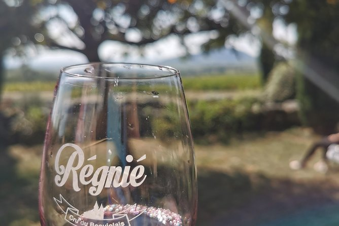 Beaujolais Wine Tasting Private Day Tour from Lyon