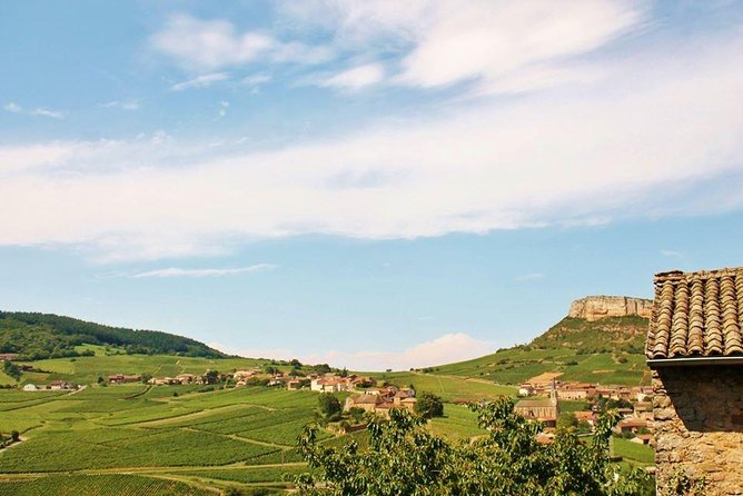 Burgundy South of Region Small Group Day Tour with Local Wine Tasting from Lyon