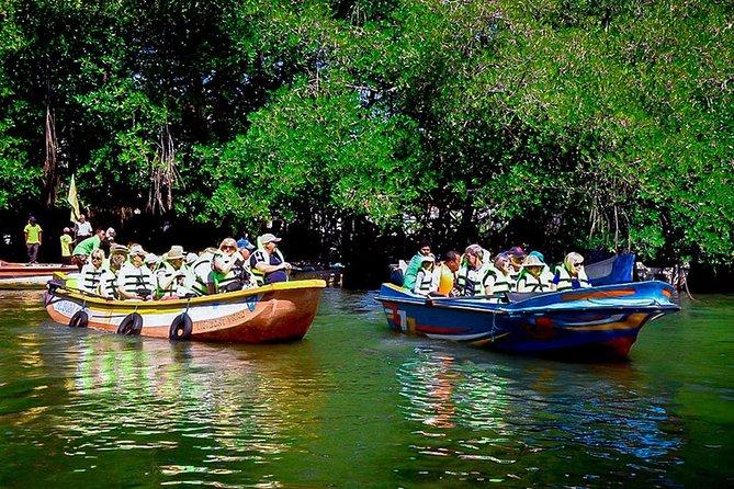 Madu River Boat Safari Balapitiya