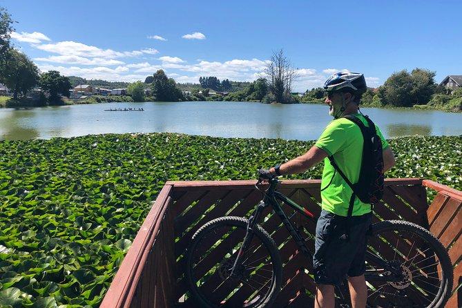 Mountain Biking - Llanquihue (15 miles)