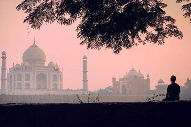 Taj Mahal Private Day Trip With Agra Fort & Itmad-ud-Daulah From Delhi