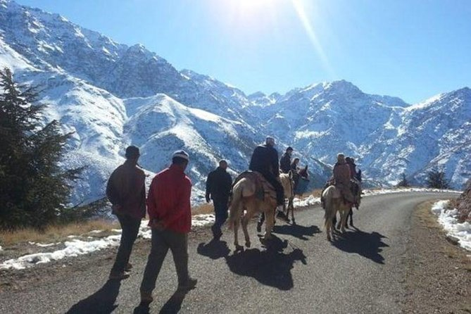 Atlas Mountains and Three Valleys & Waterfalls - Camel ride Day Trip Marrakech photo 20