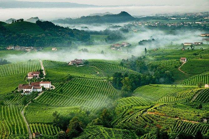 Franciacorta Wines & Bergamo from Milan - Private Tour