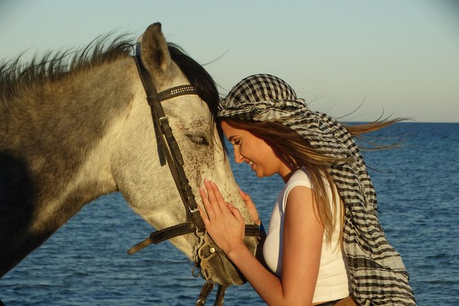 Horse Riding 2 hours - Hurghada