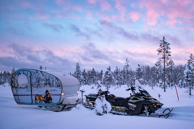VIP Camping under the Northern Lights with Sauna