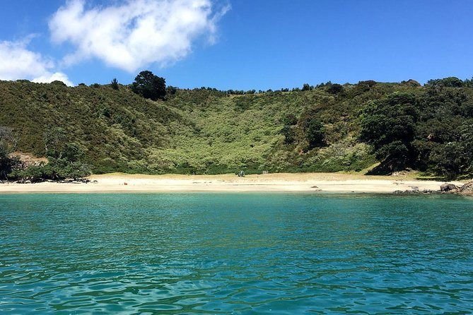 Waiheke Island Bush & Beach Walk