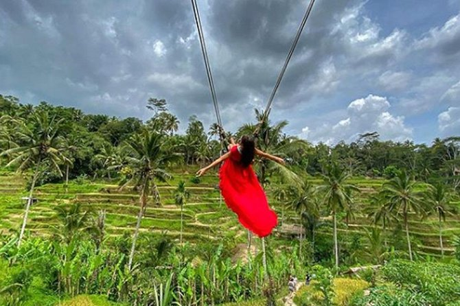 Ubud Jungle-swing Tour All Included