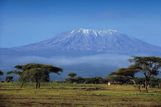 1 Day Mount Kilimanjaro Hike Trip